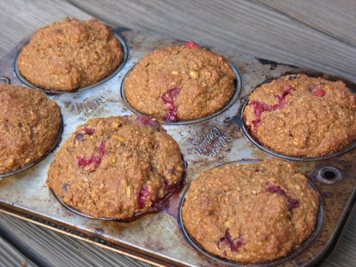 Cranberry Muffins out of the oven